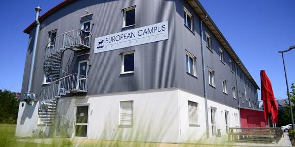 Studium international am European Campus